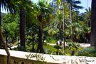 Die Gärten von Alfàbia... von Irene O