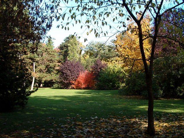 .....die ganze Farbenpracht des Herbstes!