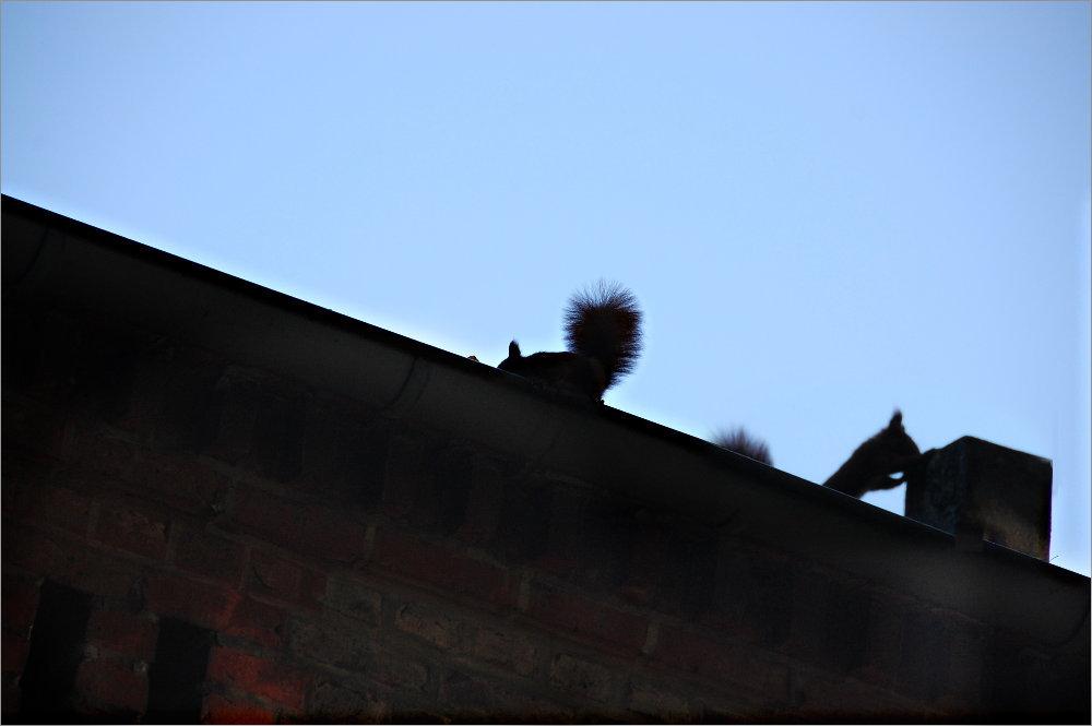 die Gehilfen des Schornsteinfegers