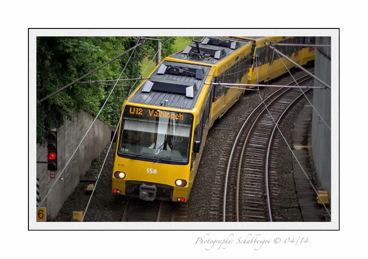 Die Gelbe U12