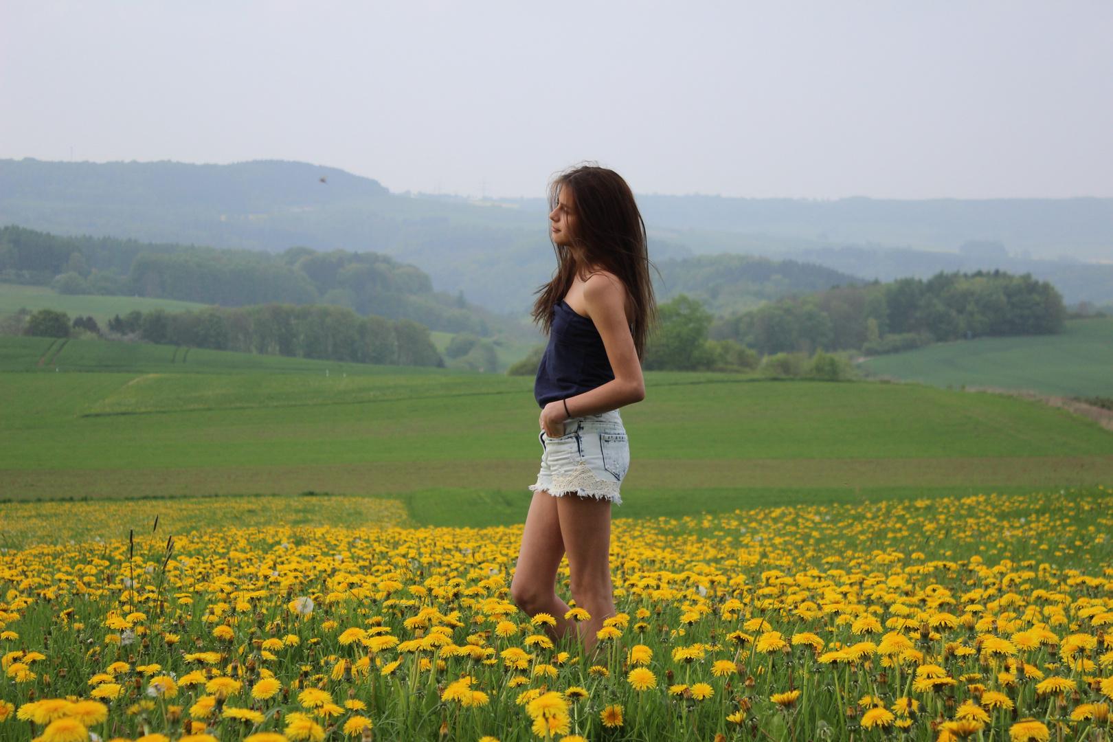 Die gelbe Wiese