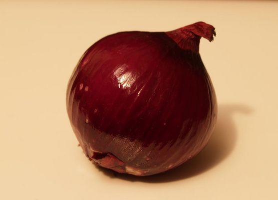 Die gemeine Zwiebel