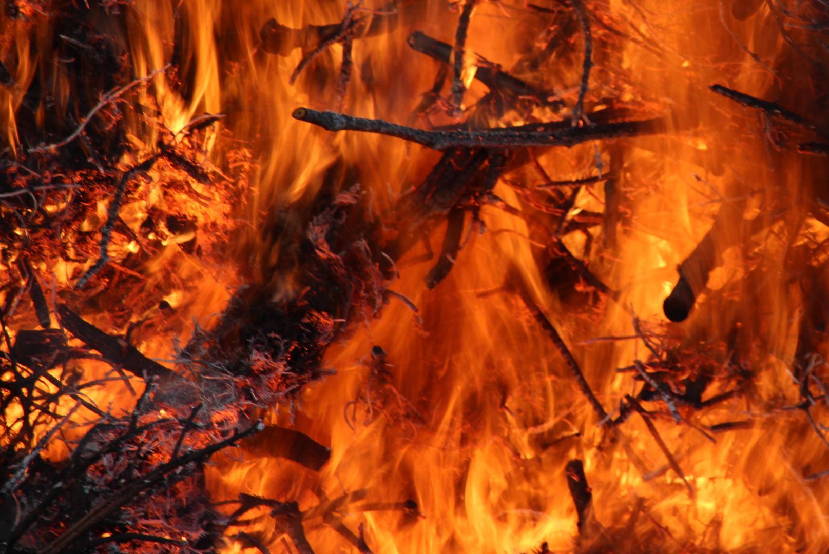 Die Gewalt des Feuers