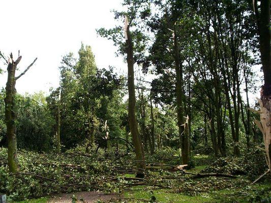 Die gewaltvolle Rückkehr der Natur... >>> Schäden des Tornados in Duisburg-Rheinhausen...