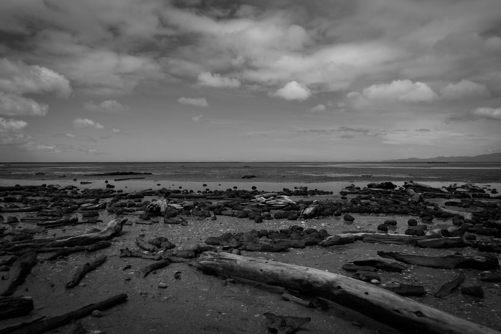 Die Golden Bay - Unendliche Weiten