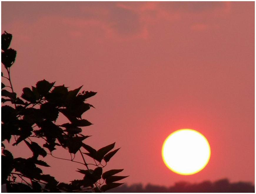 Die goldene Sonne von.....