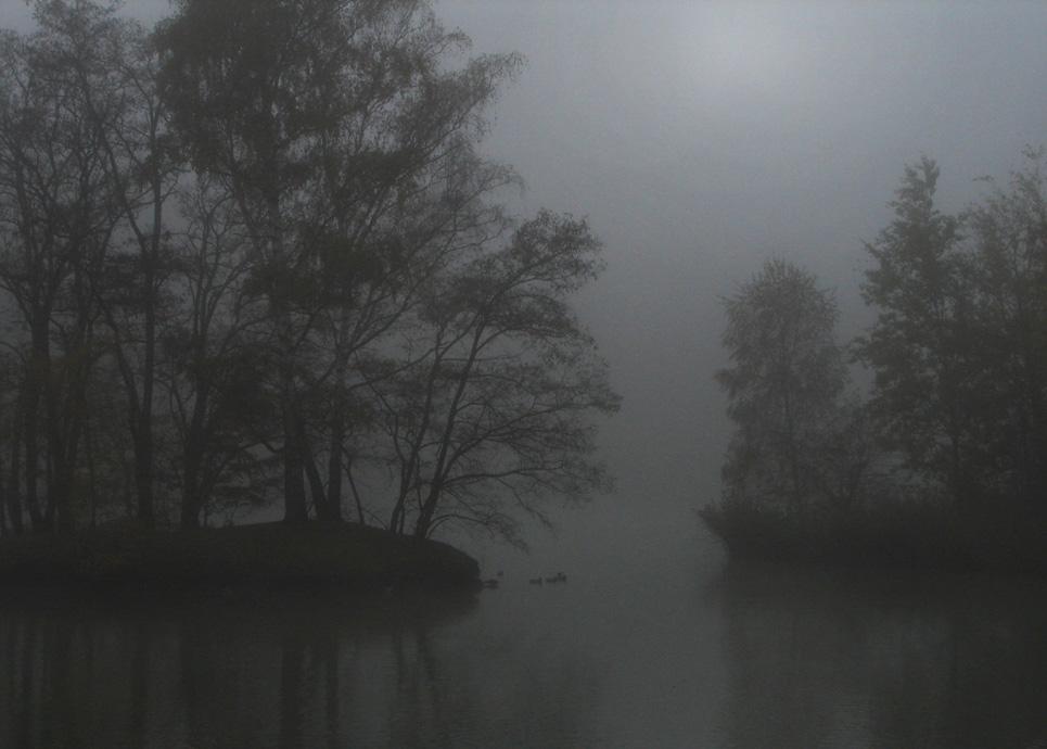 Die grauen Nebel...