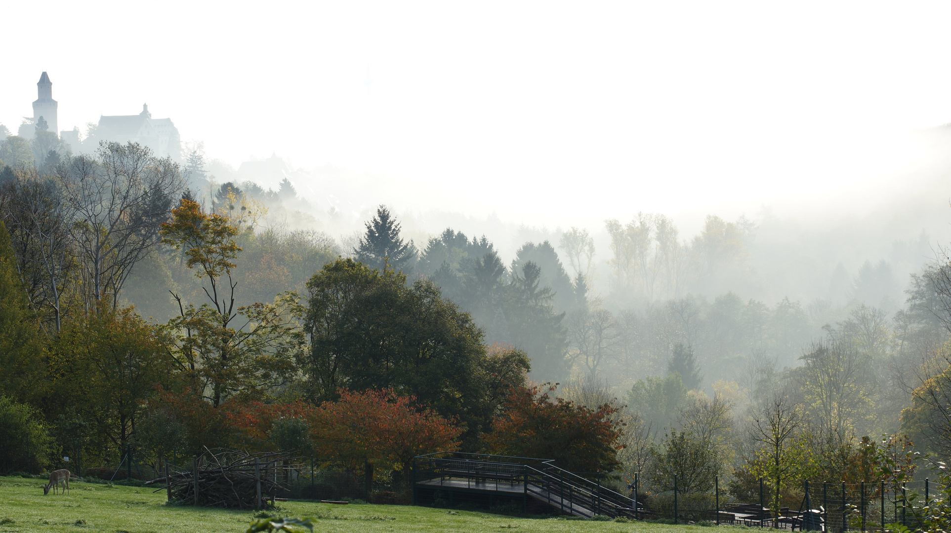 Die grauen Nebel hat das Licht durchdrungen