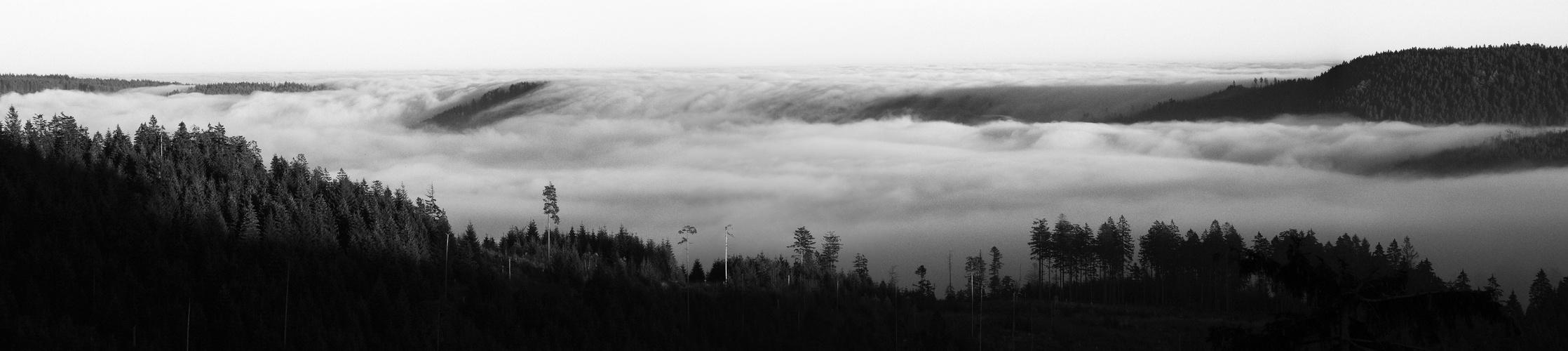 Die große Nebelflut