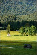 Die grüne Steiermark (2)