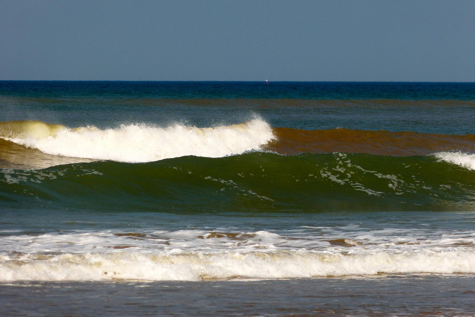 Die gruene Welle ...