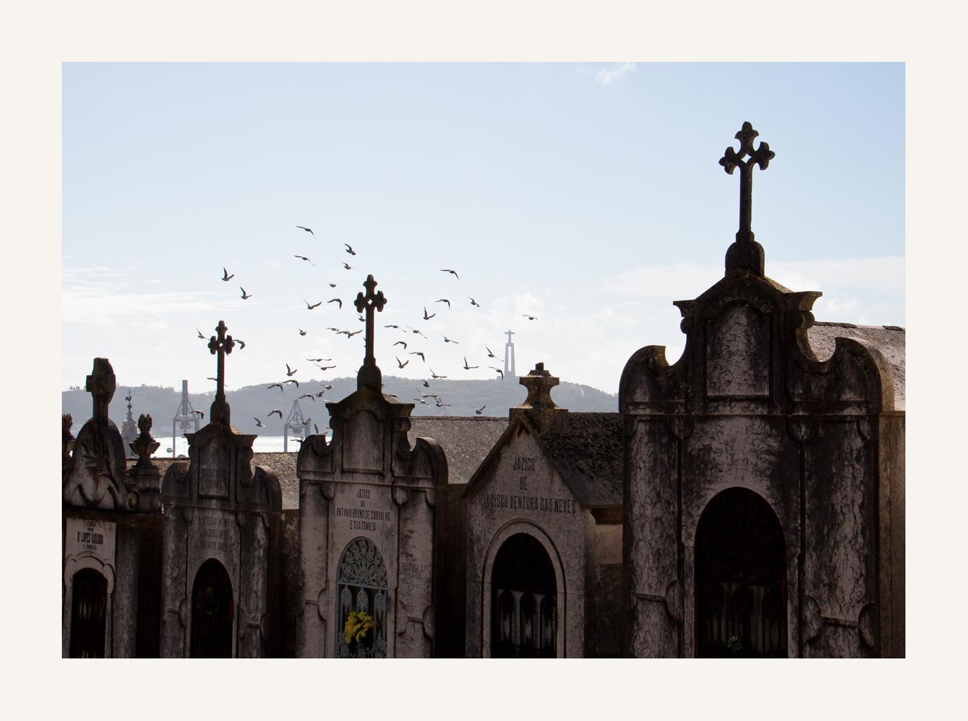 """die Häuser auf dem """"Cemitério dos Prazeres"""""""