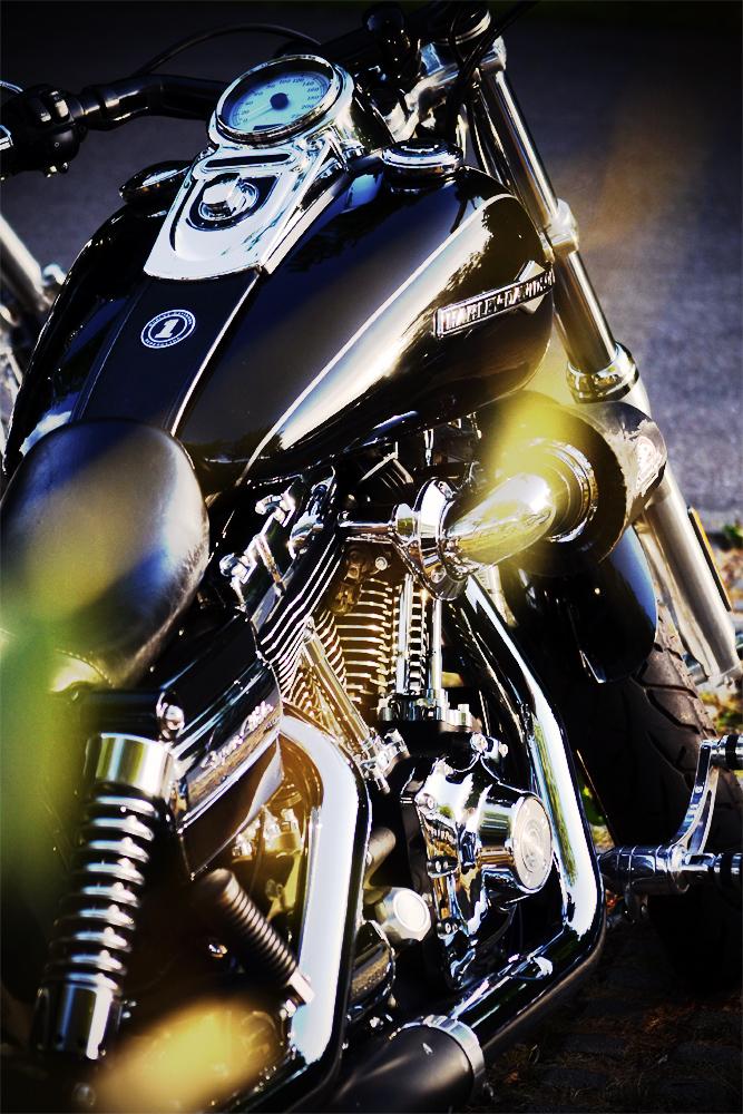 Die Harley