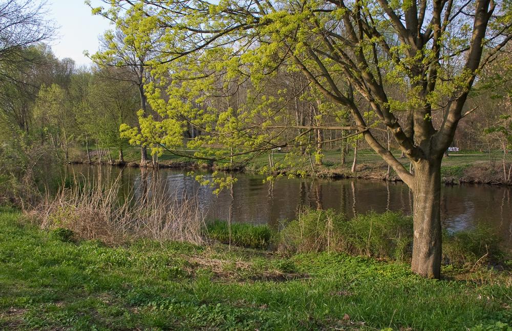 Die Havel bei Oranienburg im Frühling