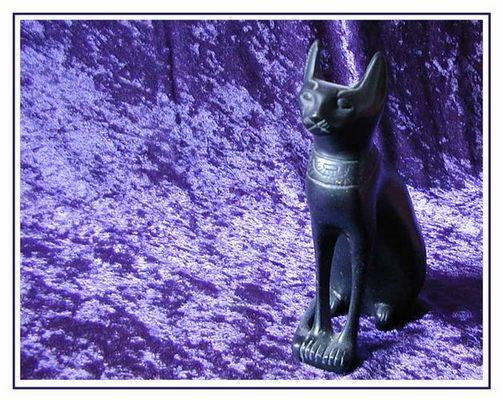 die herrschaft der katzen