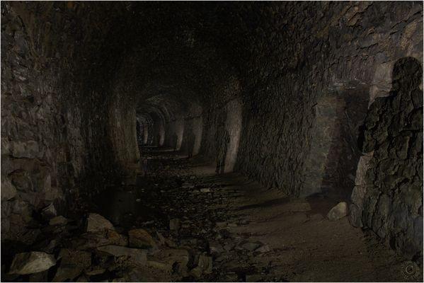 Die Höhle des Mammut...