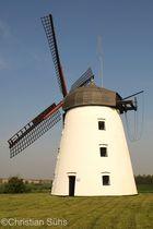 Die Holländerwindmühle am Bungenstedter Turm in Wolfenbüttel-Halchter
