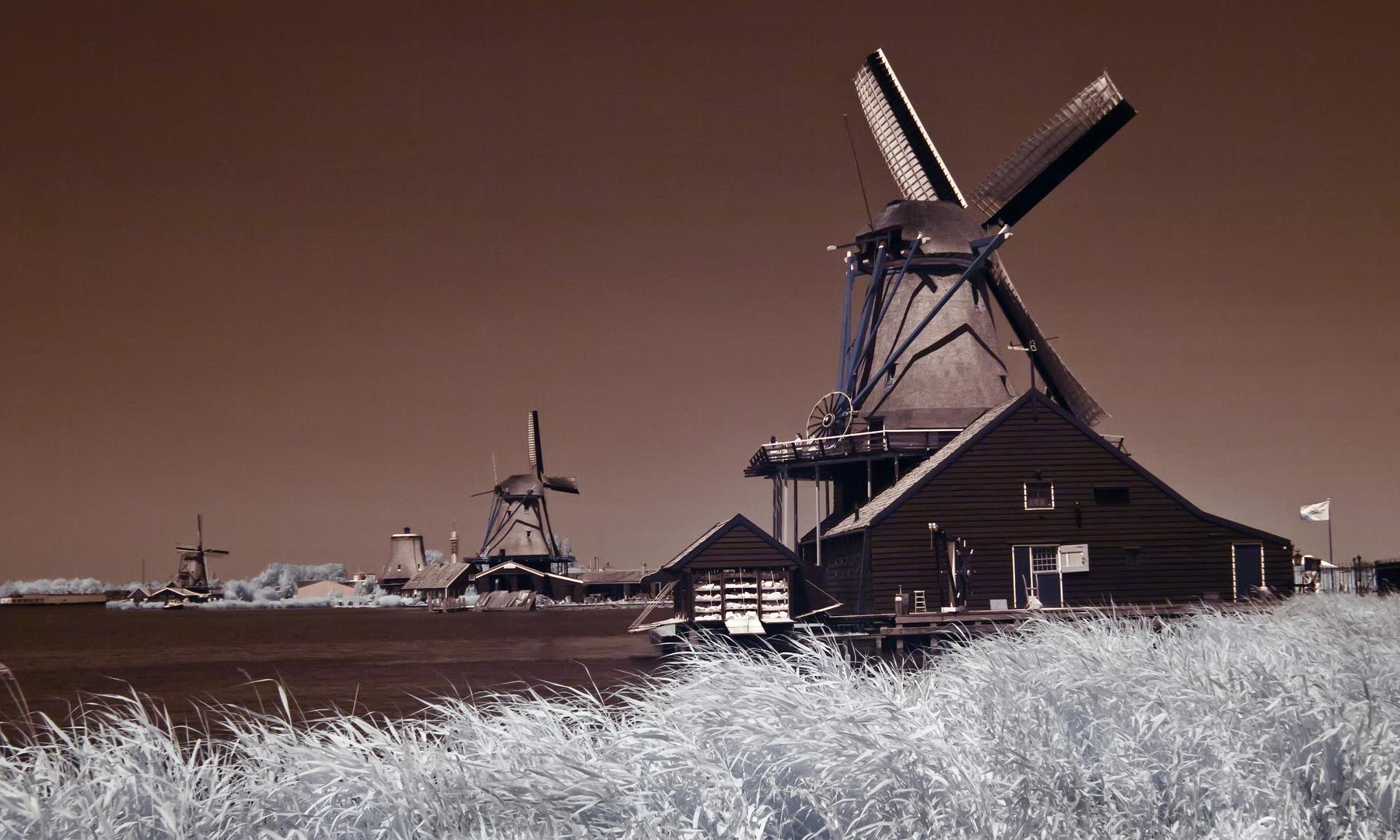 Die holländischen Mühlen...