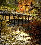 Die Holzbrücke