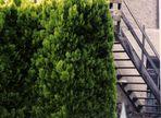 die Holztreppe