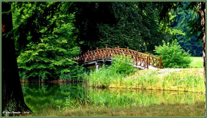 Die hübsche Schlangensee-Brücke  ..