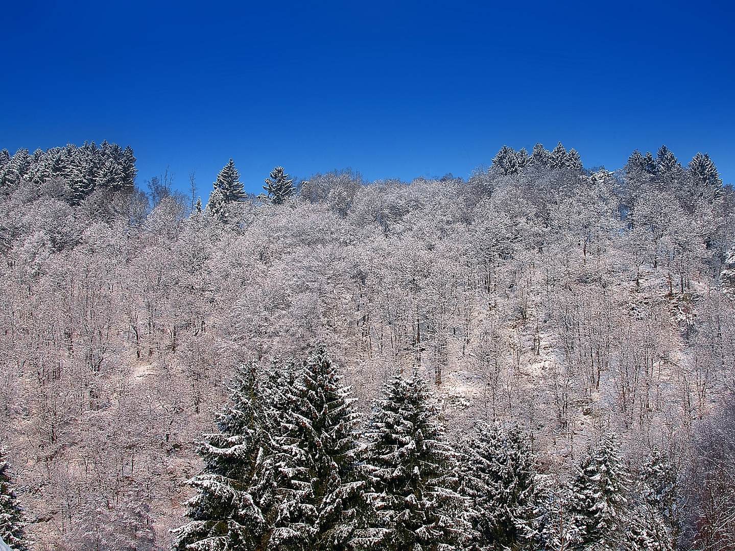 Die Hügel entlang der Wupperschleife