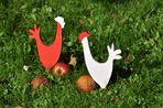 """Die Hühner spielen """"Coq Normand"""" ^^"""