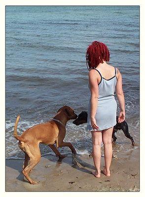 Die Hundeflüsterin