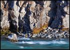 die Hvítá unterhalb des Gullfoss - Island