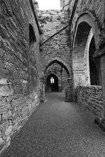 Die Jerpoint Abbey...II...
