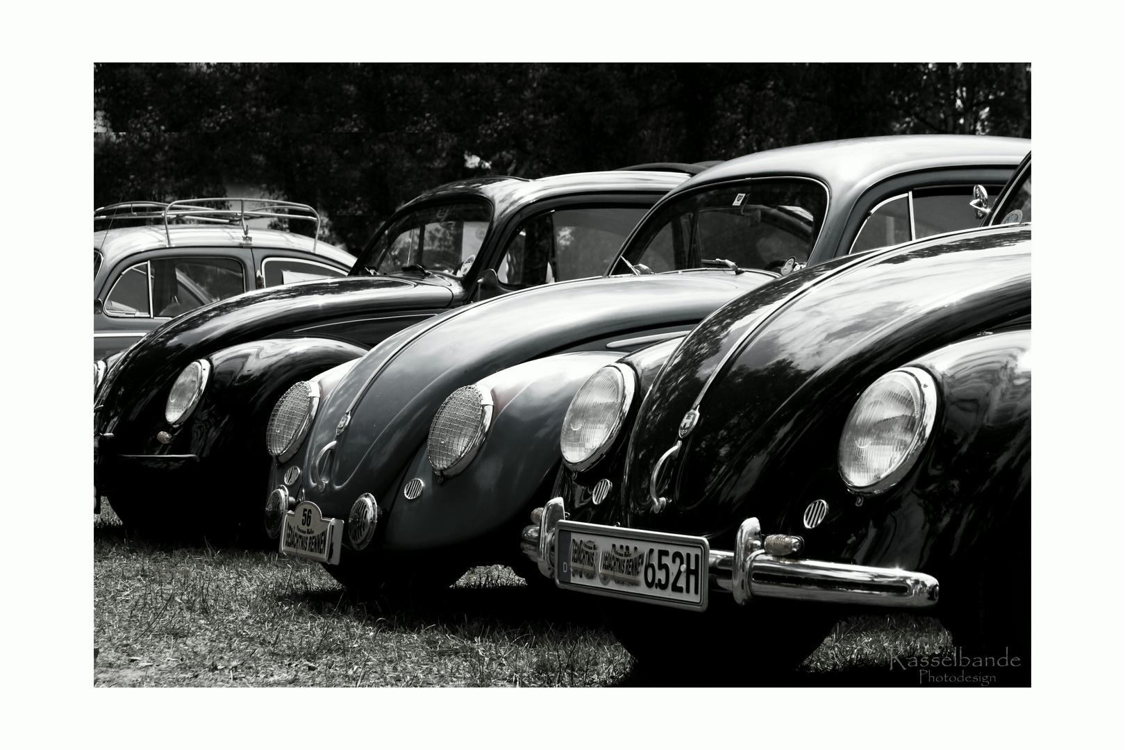 Die Käfer sind los...