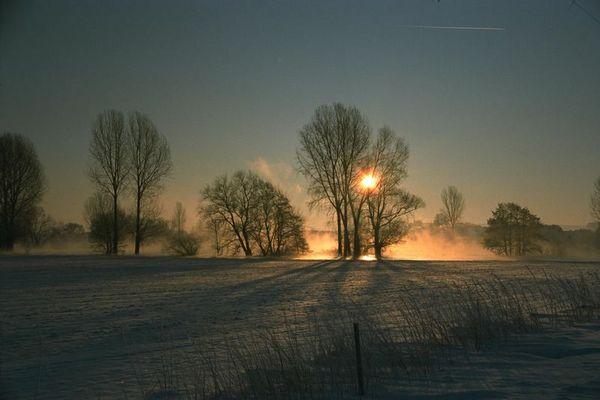 die Kälte sichtbar #2