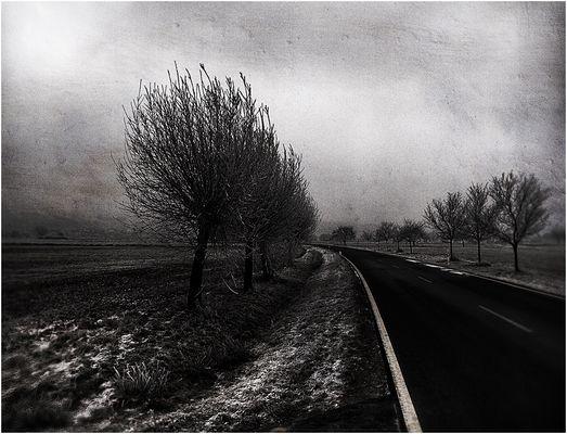 Die kalten Tage kommen bald... [III]