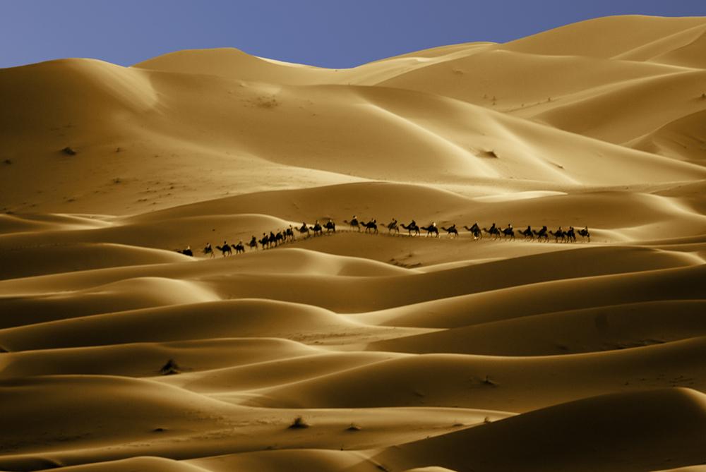 Die Karawane von Marrakesch