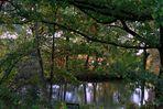 -Die kleine Bank am Teich-