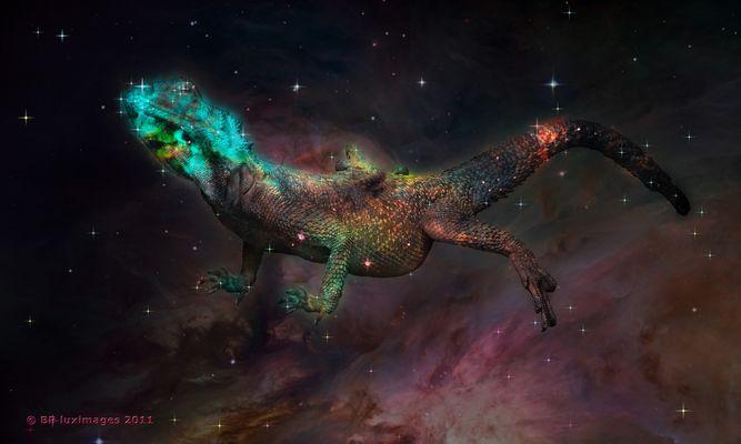 Die kosmische Echse