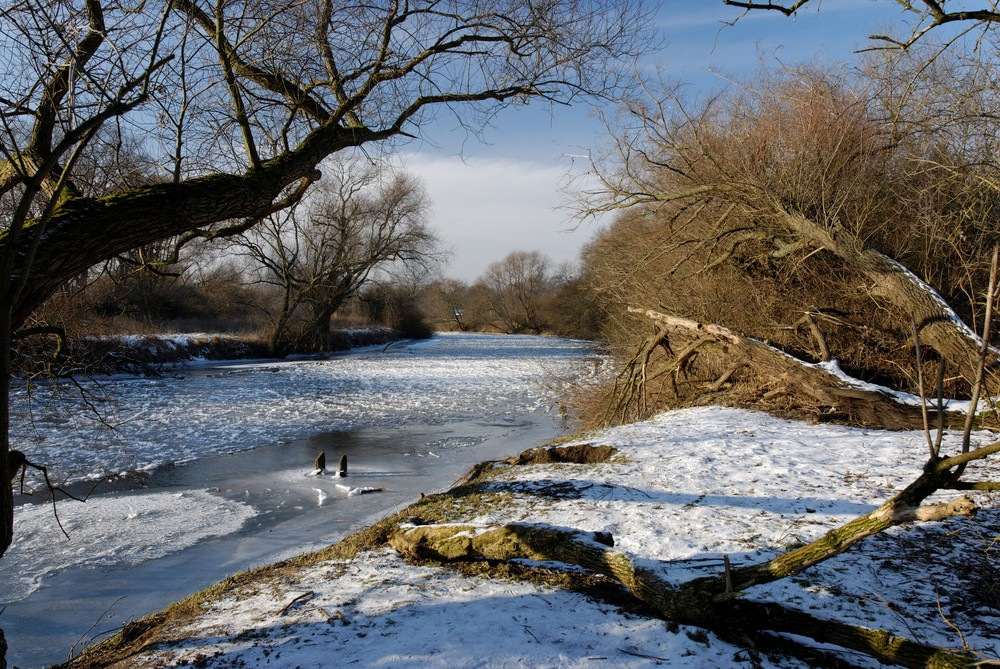 Die Leine in Winter