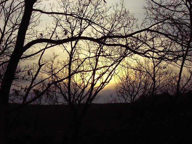 Die letzte Abendsonne vor dem Frühlingsanfang