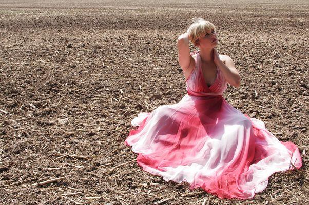 die letzte Blume auf dem Feld