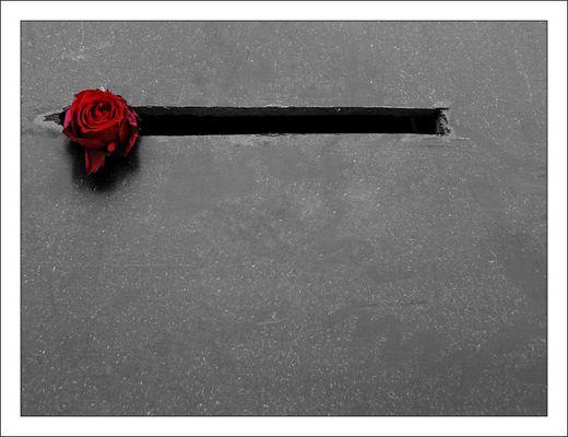 Die letzte Rose von Otzenrath ...
