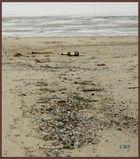 Die letzte Strandparty