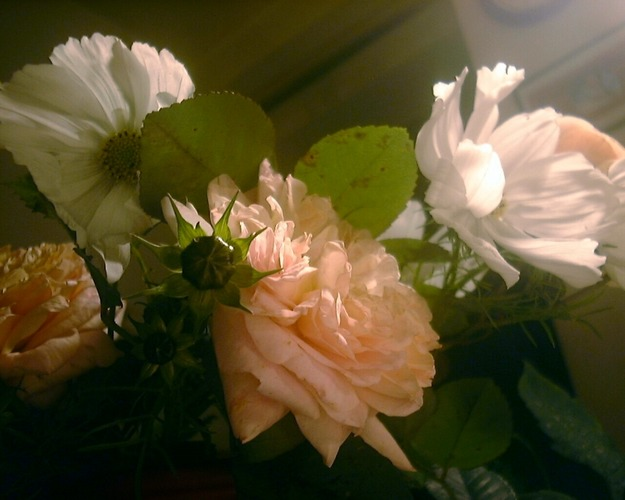 Die letzten Blüten