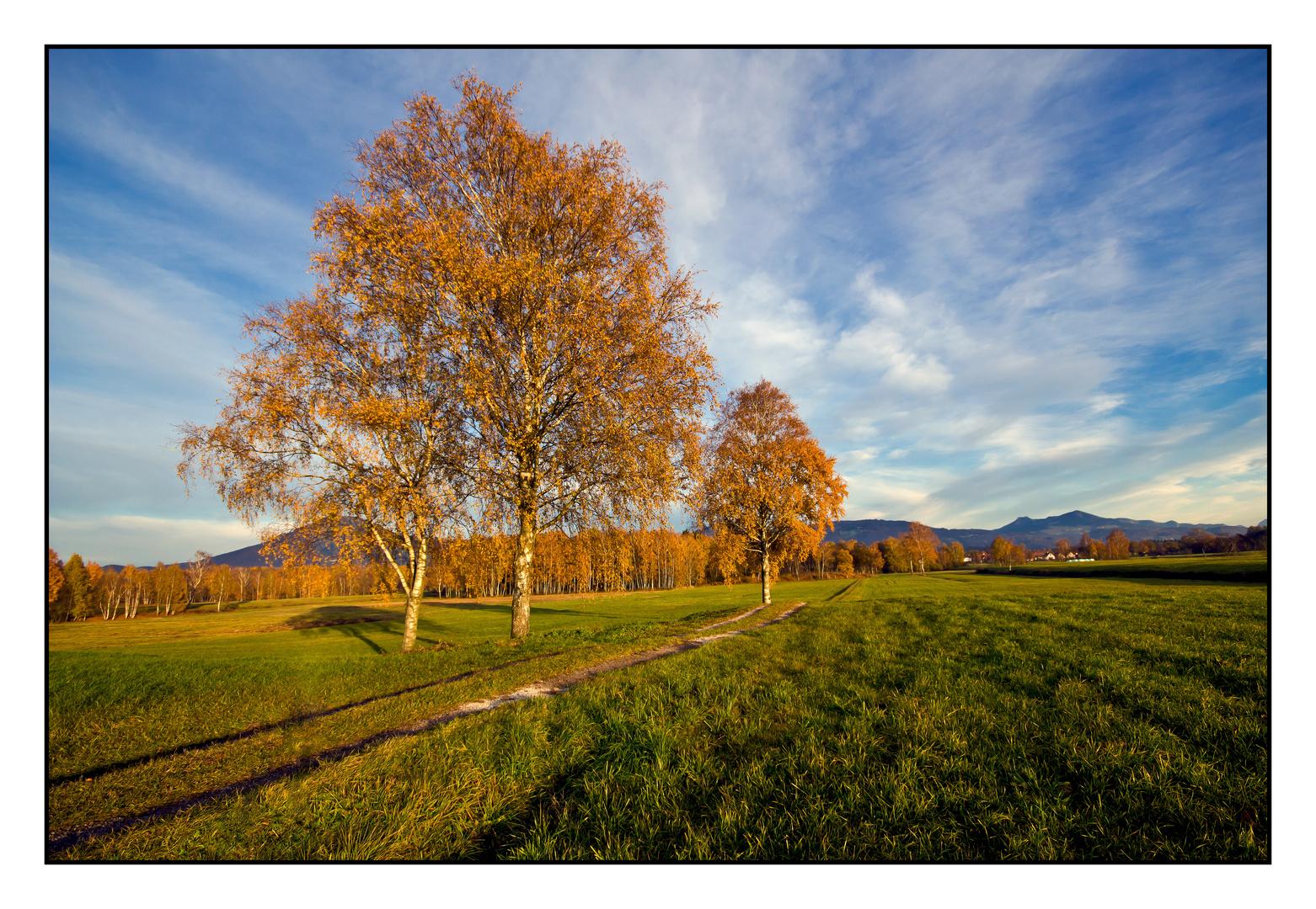Die Letzten Herbsttage 2011