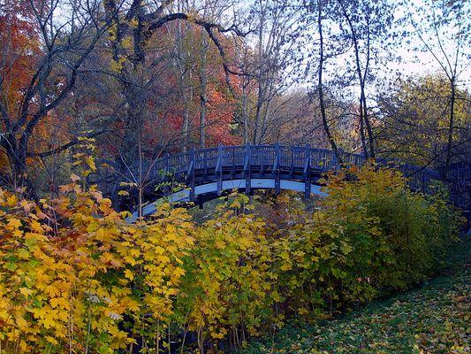 Die letzten Herbsttage