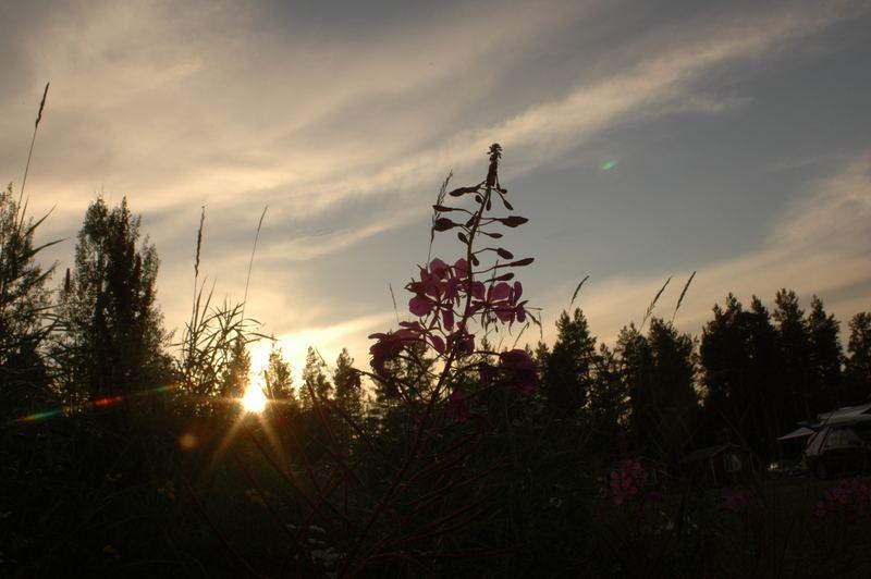 Die letzten Momente Sonnenlicht....