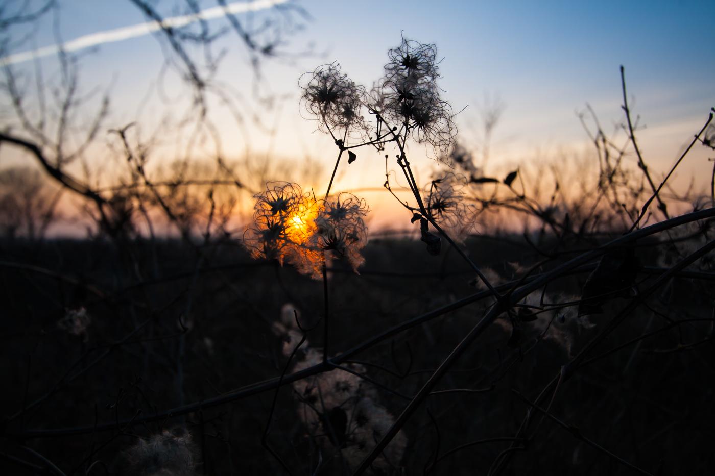 Die letzten Sonnenstrahlen erhaschen...