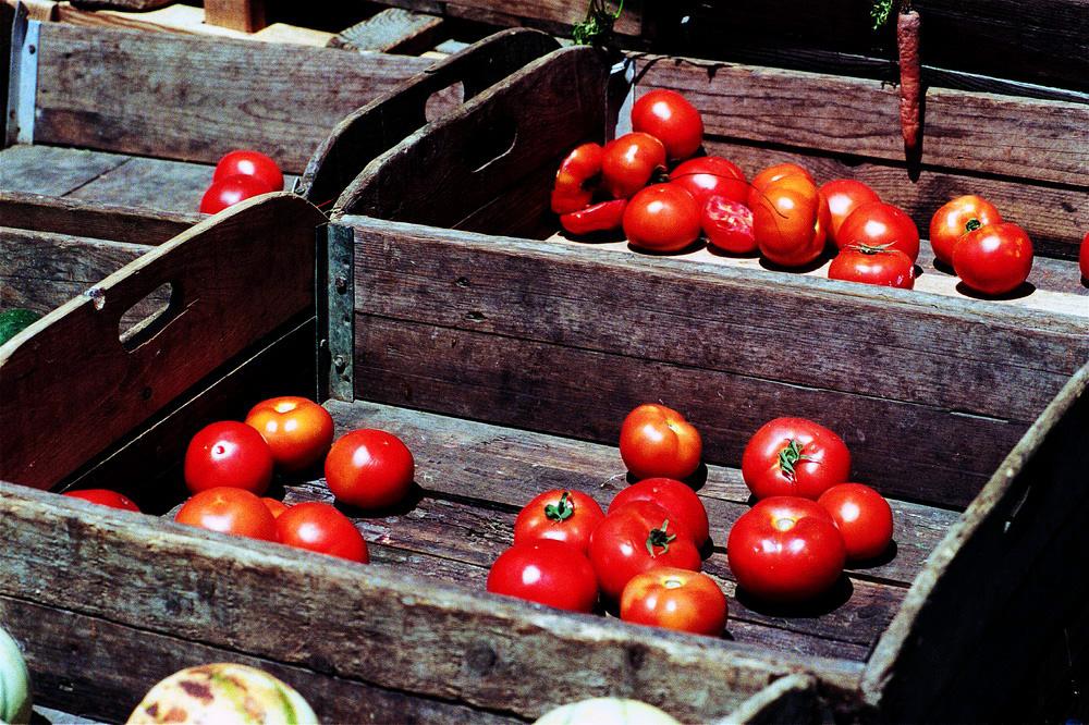 Die letzten Tomaten auf dem Markt