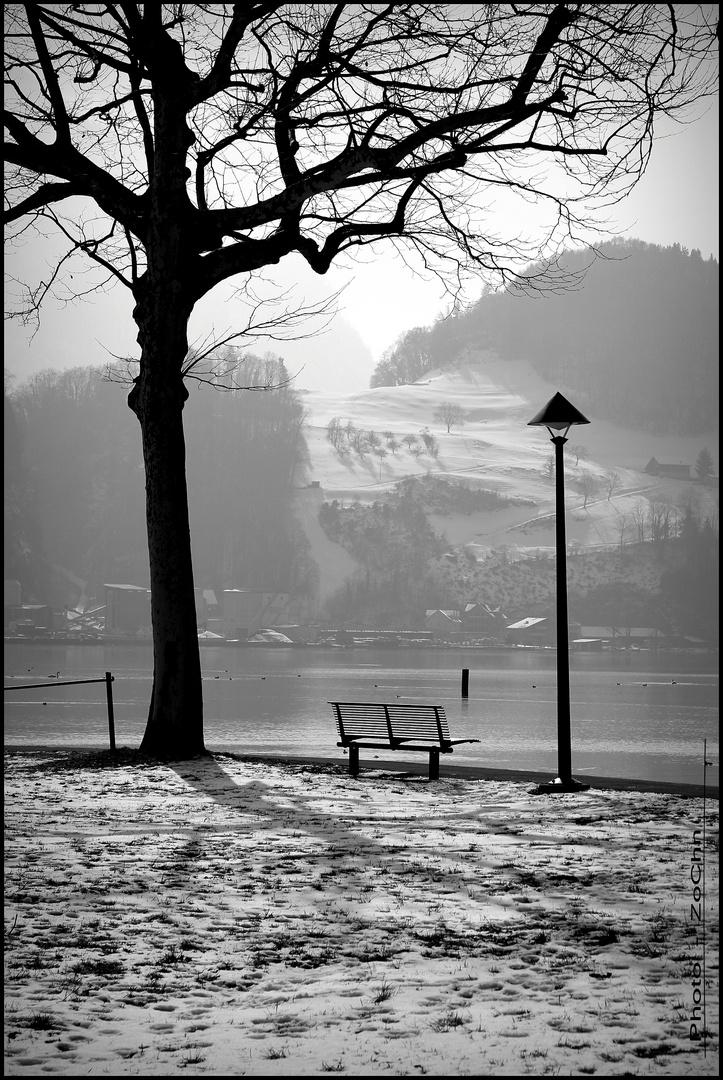 die letzten Winterbilder