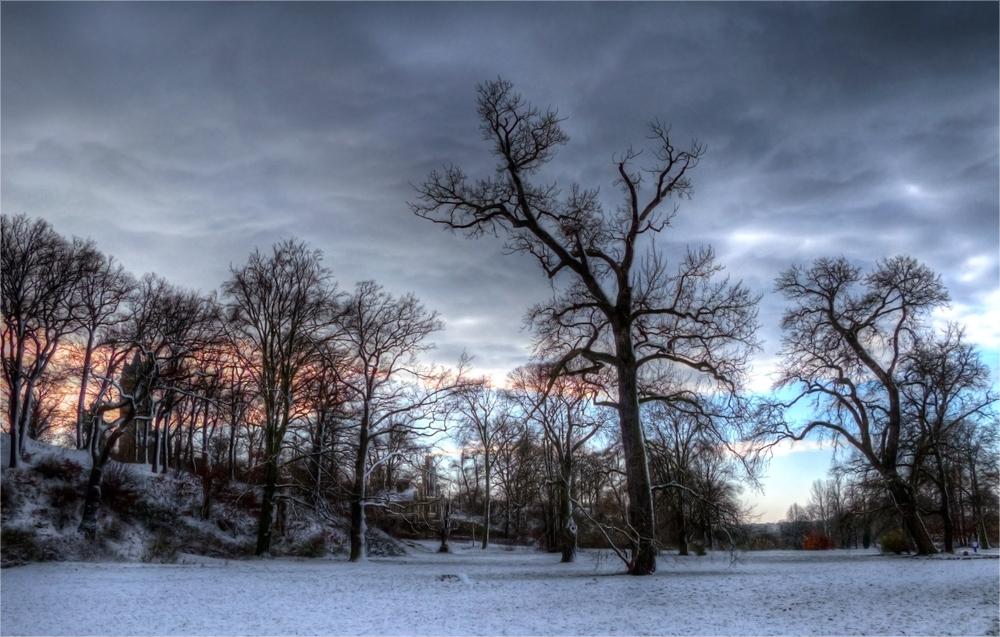 Die letzten Wintertage...