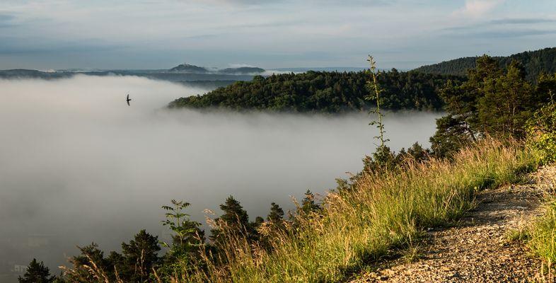 Die Leuchtenburg über dem Nebel